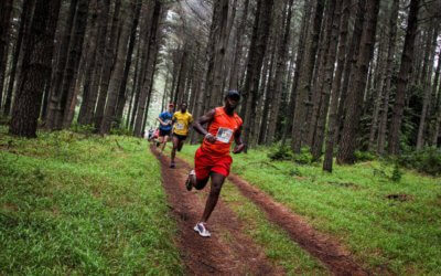 Kempston Hogsback Trail Run 2017