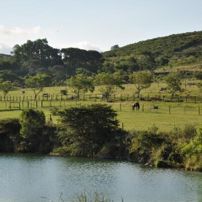 Kempston Farms